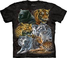Big Cats on Black