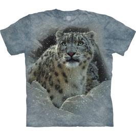 Schneeleopard Grey
