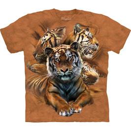Tiger Resting Collage