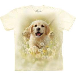 Hund Puppy
