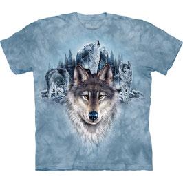 Wolf hellblau