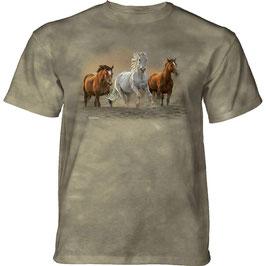 Pferd on the run