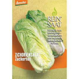 REINSAAT GEMÜSESAMEN  - Zichoriensalat Zuckerhut 1 Btl