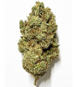 CBD Jack Fruit