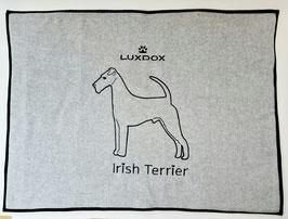 große Irish Terrier Plaids