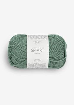 Smart Eukalyptus 8051