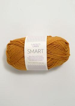 Smart Ocker 2527