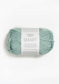 Smart helles Seegrün 7721
