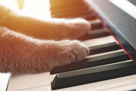 """Klavierkurs """"Jazz & Blues"""""""
