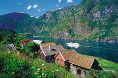 Sognefjord Noorwegen (puzzel 3000 stuks)