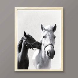 """Artprint """"Pferde"""""""