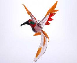 Kolibri ''Lille''