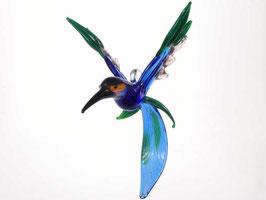 Kolibri ''Maribu''
