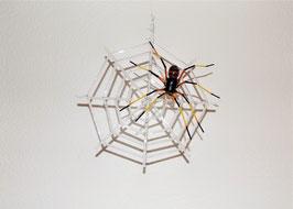 """Spinne """"schwarz / rot"""" mit Netz"""