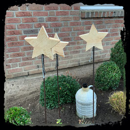 Stern auf Metallstab