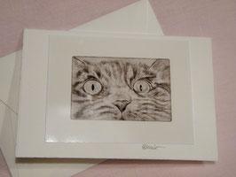 Künstlerkarte 'neugierige Katze'