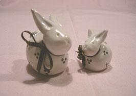 Kleine Häschen weiß mit braunen Tupfen
