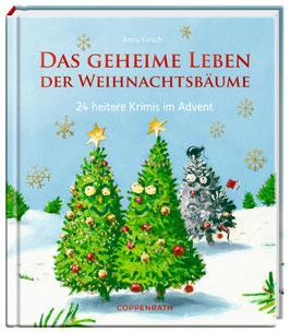 24 Impulse im Advent - Adventkalenderbuch