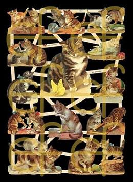 Glanzbilder-Bogen Katzenkinder