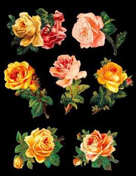 Glanz-Reliefbilder Rosen