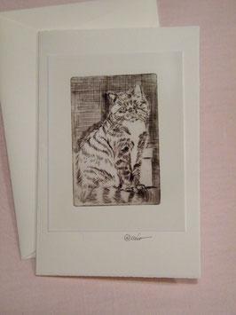 Künstlerkarte 'sitzende Katze'