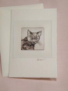 Künstlerkarte 'Portät-Katze'