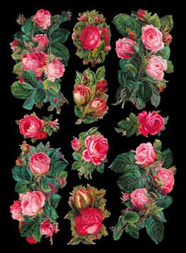 Glanz-Reliefbilder rosa Rosen