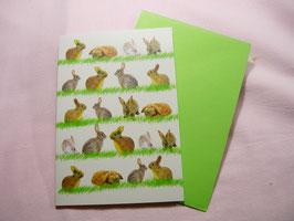 Ostergrußkarte Hasenwiese