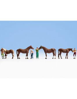 4 Cavalli con 4 addetti alla cura COD:15632