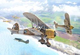 FIAT CR.42 Falco COD: 1437
