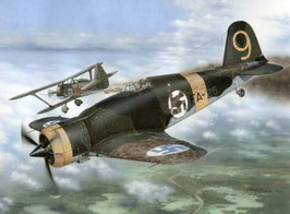 Fiat G.50-II in Finnish COD: SH32044