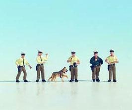 Agenti di polizia COD: 15095