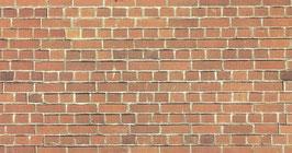 Muro in mattoni COD: 57550