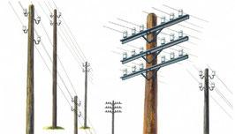 Telegraph Poles COD: 404