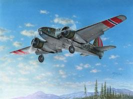 Caproni Ca.310 COD: A103