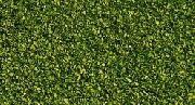 Pascolo alpino, verde chiaro COD: 08410