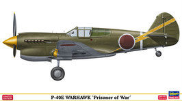 P-40E Warhawk Prisoner of War cod: SP304