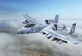 A-10C ''Blacksnackes'' COD: 2725