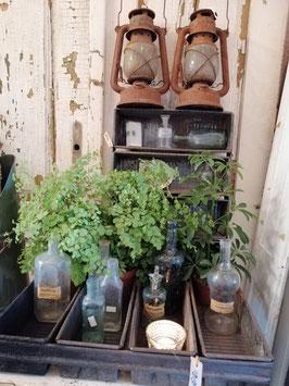 Gave oude bakkersvorm met 4 bakken, hier gestyled met planten, waxinelichtje, flesjes en als wandkastje, afmetingen 9 x 50 x 36 cm, prijs per stuk