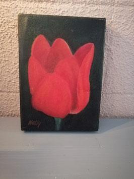 Lief olieverf schilderij van een tulp, afmetingen 18 x 13 cm