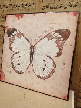 Lief wandbord van metaal met afbeelding van vlinder, 30 x 30 cm, prijs per stuk