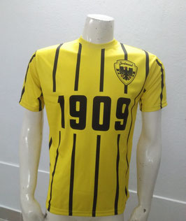 Dortmund 1909 Trikot Gelb