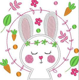 Coniglio Carote
