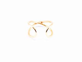 anillo ERICA