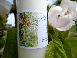 Blüten Milch