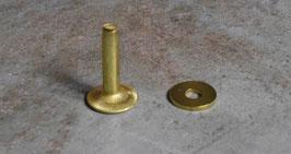 Rivets à mater en laiton 19.5 mm / T40