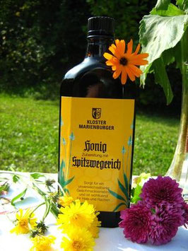 Spitzwegerich (250 ml Flasche)