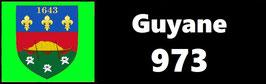 ( 973 )   Un Porte certificat simple pour assurance ou CT. Département Guyane  (fond noir ou transparent)
