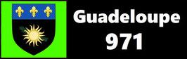 ( 971 )   Un Porte certificat simple pour assurance ou CT. Département Guadeloupe  (fond noir ou transparent)