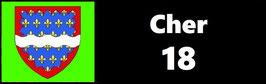 ( 18 )   Un Porte certificat pour assurance ou CT. Département Cher (fond noir ou transparent)